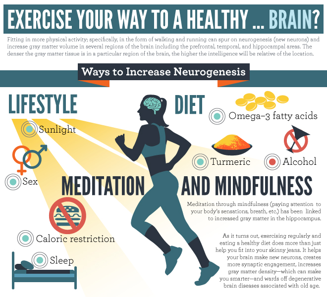 Gray Matter Density Increases During >> Exercise Your Way To A Healthy Brain