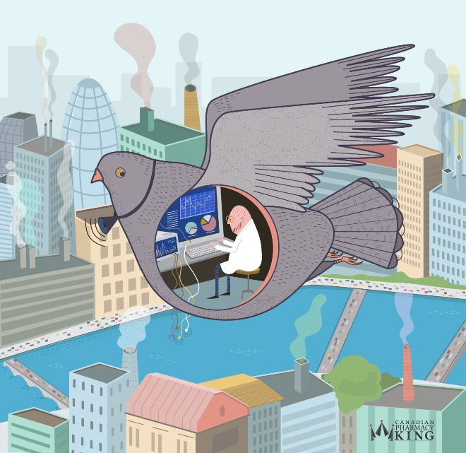 Pigeon Air Testing