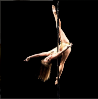 Pole Athlete Bee in Action preview